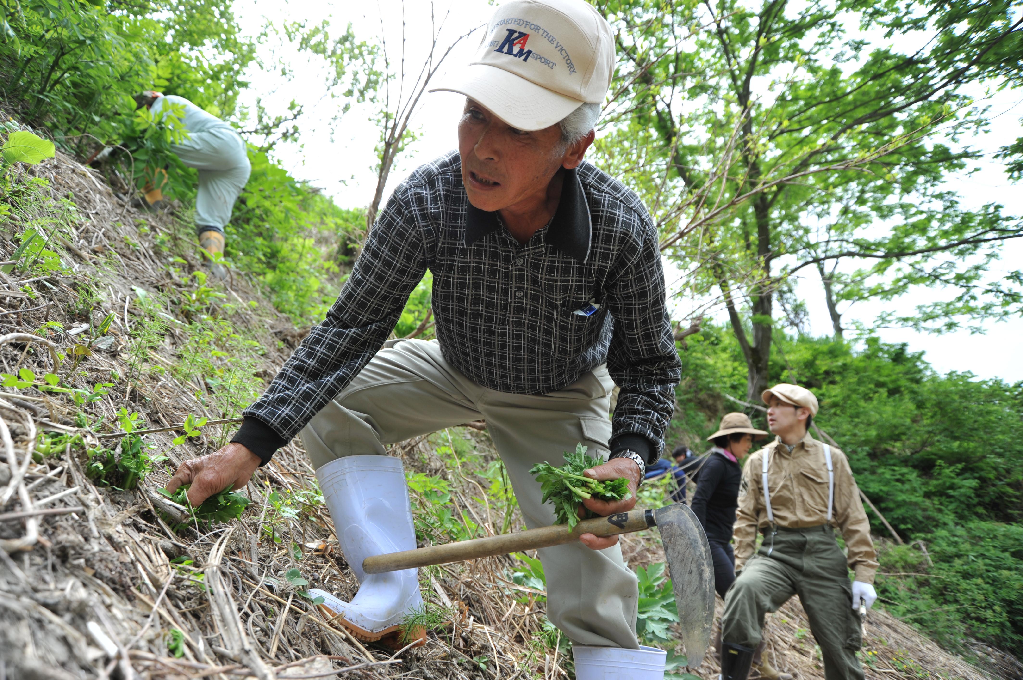 山の匠に教わる、人気の山修行・実践型インターン。山菜採りから狩猟まで山での暮らしを体験できる。