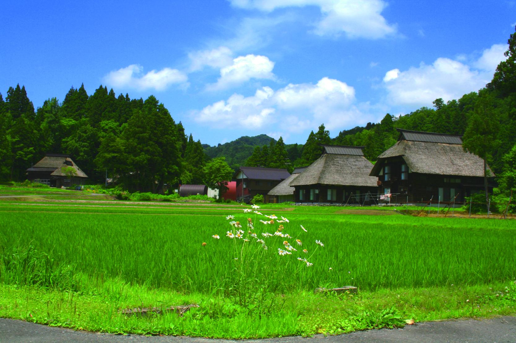 インターンシップの受け入れ先の一つ、中立山・中原集落には、今でも日本の原風景が残っている。