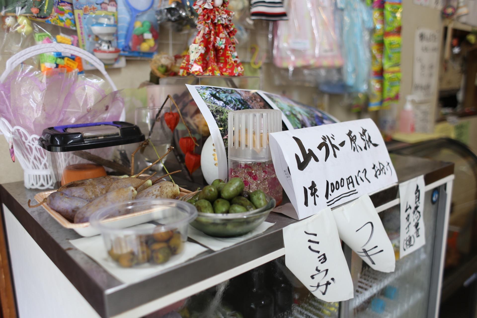 冷蔵庫の上に載っていた果物を発見。手前にあるのがマタタビ、右がキウイ科のサルナシ。