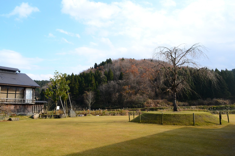 休憩スペースからは、山と田園風景が見渡すことができ、春には一本桜が咲き誇る。