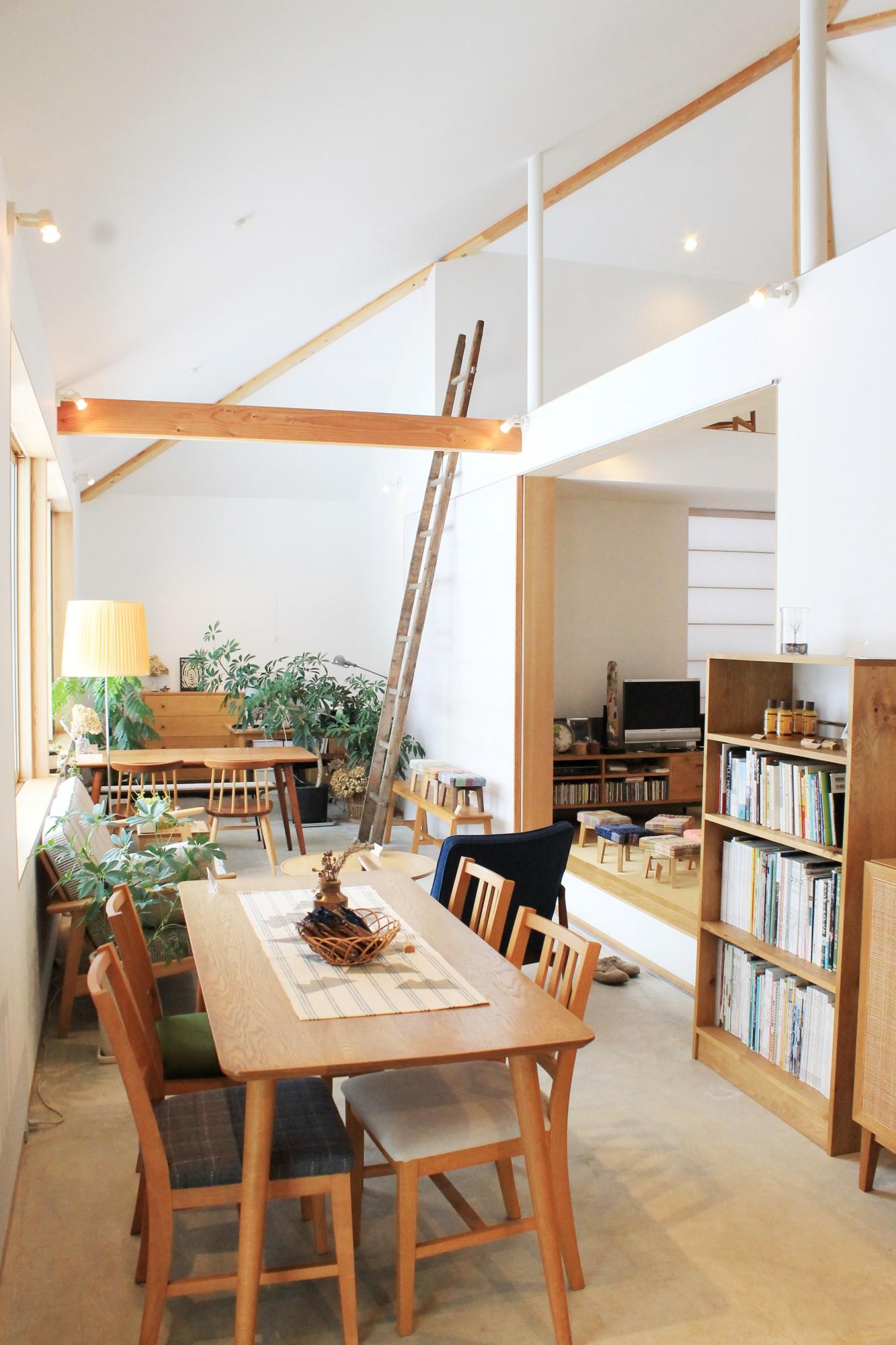 家具の展示をしている店舗スペースと、写真の右奥のテレビがあるスペースは、実際にリビングとして使用。九里さんの暮らしぶりそのものがモデルルームとしてオープンに。「nineの家具」がある生活がリアルに見えてきます。