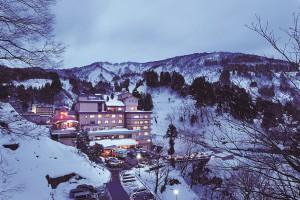 k110125和泉屋-全景冬(先方支給)軽め-m