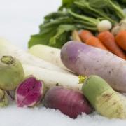 01雪室野菜
