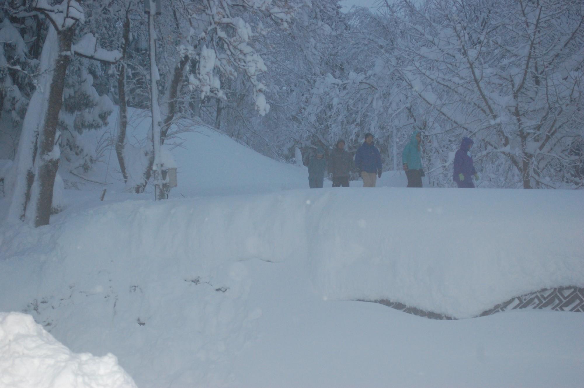 ふかふかの雪。静けさの中に新雪の音だけが聞こえてきます。