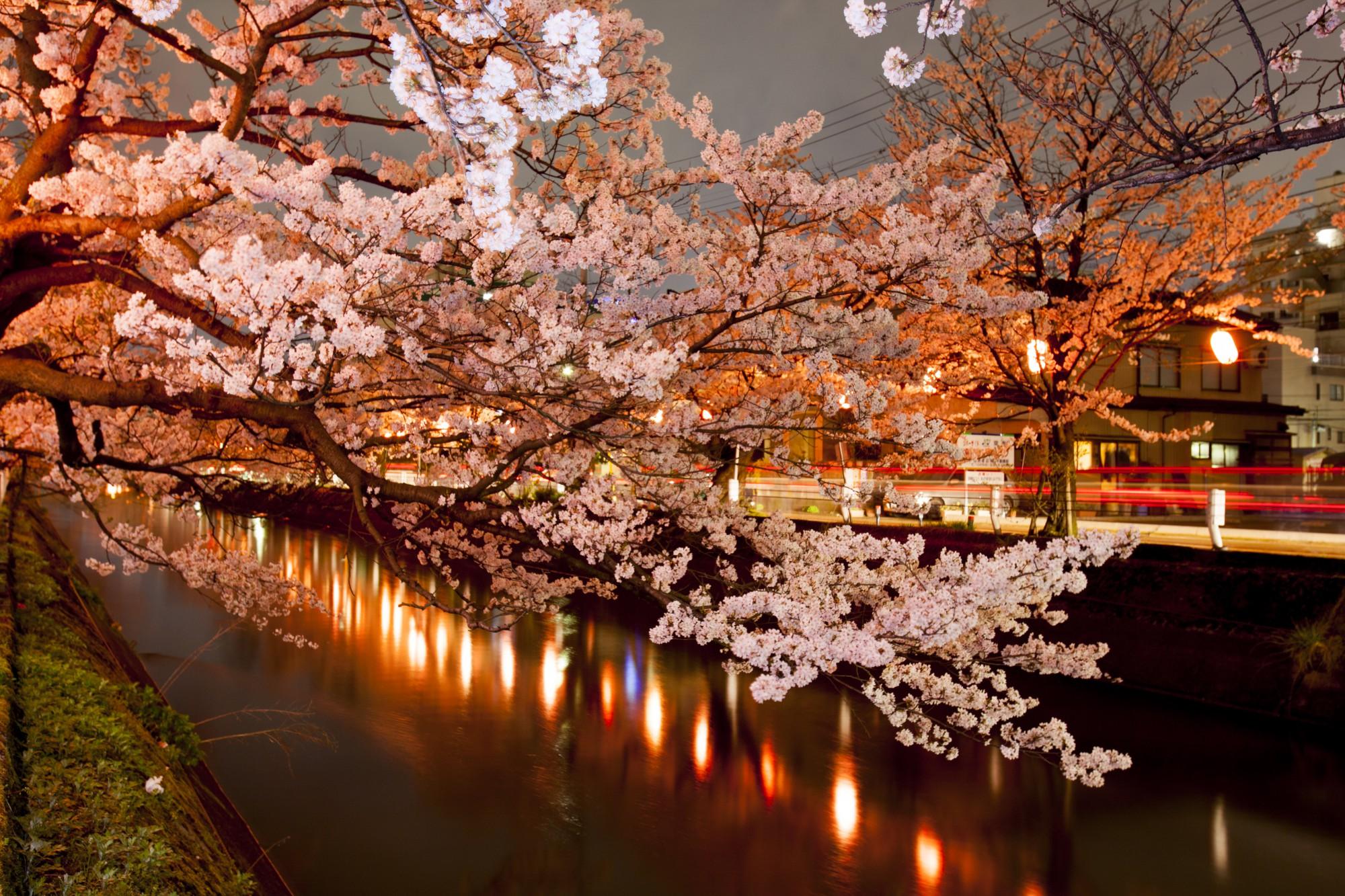 福島江(夜)