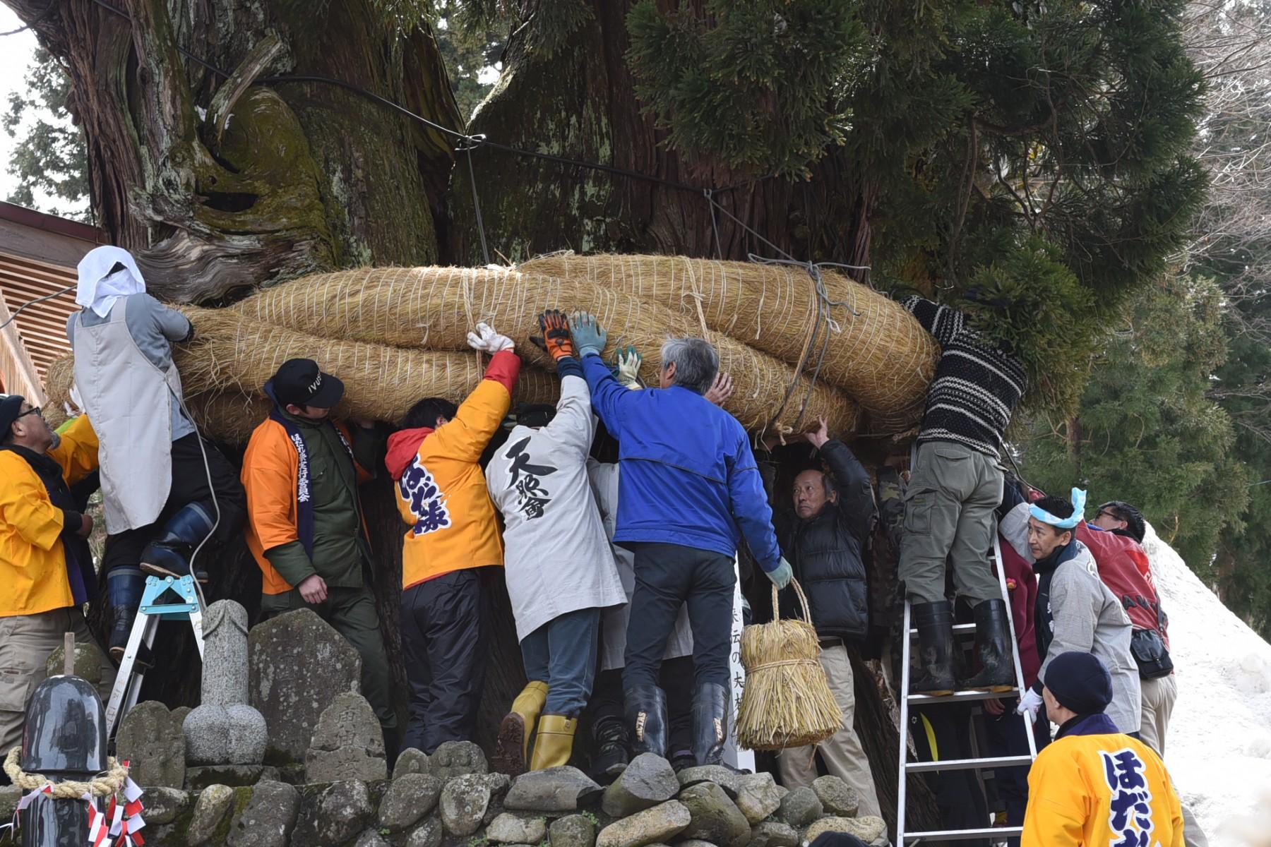 大しめ縄は地元で刈り取った稲穂を利用して、毎年手作りしているそう。