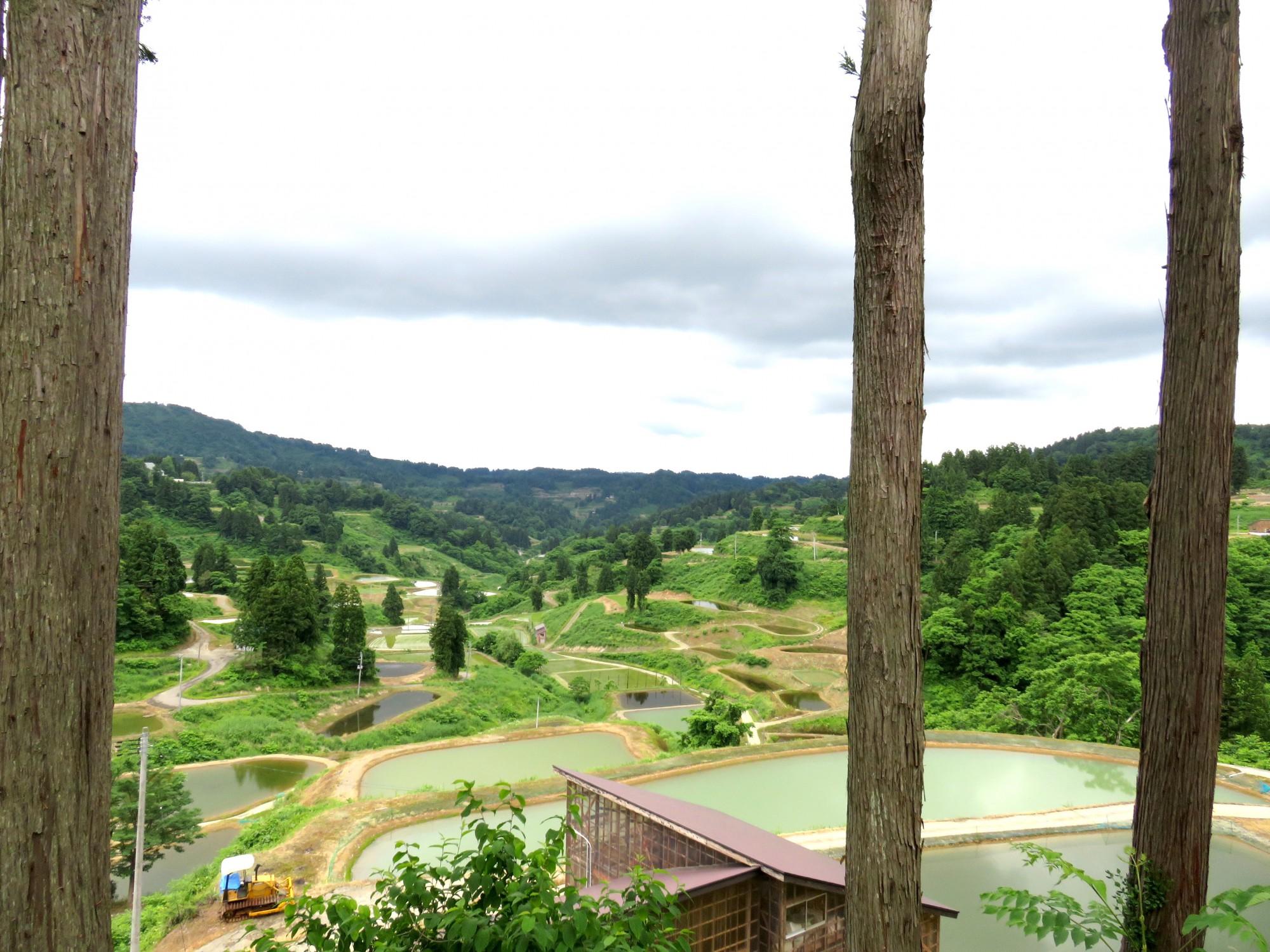 20山古志の風景2