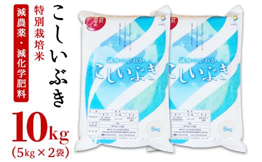新潟県長岡産こしいぶき5kg