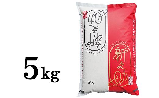 新潟県長岡産「新之助」5kg